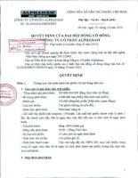 Nghị quyết đại hội cổ đông ngày 19-10-2010 - Công ty Cổ phần Đầu tư Alphanam