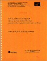 Báo cáo tài chính hợp nhất năm 2013 (đã kiểm toán) - Công ty cổ phần Phân bón Bình Điền