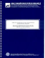Báo cáo tài chính hợp nhất quý 2 năm 2012 (đã soát xét) - Công ty cổ phần Đầu tư Hạ tầng Kỹ thuật T.P Hồ Chí Minh