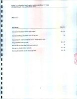 Báo cáo tài chính hợp nhất quý 2 năm 2014 (đã soát xét) - Công ty Cổ phần Nhựa Bình Minh