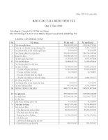 Báo cáo tài chính quý 1 năm 2010 - Công ty Cổ phần Cà phê An Giang