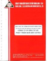 Báo cáo tài chính công ty mẹ năm 2011 (đã kiểm toán) - Công ty Cổ phần Đầu tư và Phát triển Nhà đất COTEC
