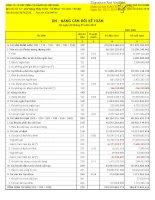 Báo cáo tài chính công ty mẹ quý 3 năm 2013 - Công ty cổ phần Xây dựng và Nhân lực Việt Nam
