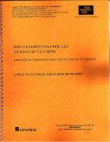 Báo cáo tài chính công ty mẹ năm 2013 (đã kiểm toán) - Công ty cổ phần Phân bón Bình Điền