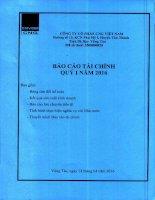 Báo cáo tài chính quý 1 năm 2016 - Công ty cổ phần CNG Việt Nam