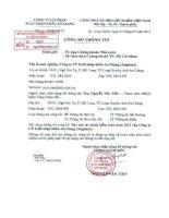 Báo cáo tài chính năm 2012 (đã kiểm toán) - Công ty cổ phần Xuất nhập khẩu An Giang