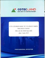 Báo cáo tài chính hợp nhất quý 2 năm 2015 - Công ty Cổ phần Đầu tư và Phát triển Nhà đất COTEC