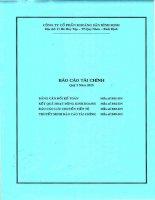 Báo cáo tài chính quý 2 năm 2015 - Công ty cổ phần Khoáng sản Bình Định