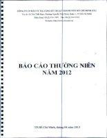 Báo cáo thường niên năm 2012 - Công ty cổ phần Đầu tư Hạ tầng Kỹ thuật T.P Hồ Chí Minh