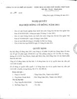 Nghị quyết Đại hội cổ đông thường niên năm 2011 - Công ty Cổ phần Cà phê An Giang