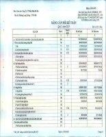 Báo cáo tài chính quý 2 năm 2015 - Công ty Cổ phần Nhiệt điện Bà Rịa