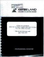 Báo cáo tài chính hợp nhất quý 3 năm 2010 - Công ty Cổ phần Đầu tư và Phát triển Nhà đất COTEC