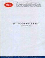 Báo cáo tài chính hợp nhất quý 2 năm 2012 - Công ty Cổ phần Chiếu xạ An Phú