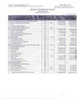 Báo cáo tài chính quý 1 năm 2013 - Công ty Cổ phần Chứng khoán ASC