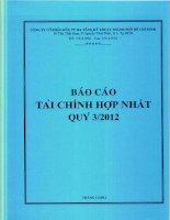 Báo cáo tài chính hợp nhất quý 3 năm 2012 - Công ty cổ phần Đầu tư Hạ tầng Kỹ thuật T.P Hồ Chí Minh