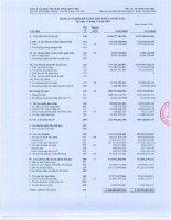 Báo cáo tài chính năm 2009 - Công ty Cổ phần Tập đoàn Công nghệ CMC