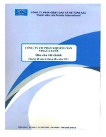 Báo cáo tài chính quý 2 năm 2011 (đã soát xét) - Công ty Cổ phần Khoáng sản Vinas A Lưới