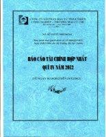 Báo cáo tài chính hợp nhất quý 4 năm 2012 - Công ty Cổ phần Đầu tư Phát triển Công nghiệp - Thương mại Củ Chi
