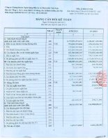Báo cáo tài chính quý 2 năm 2013 - Công ty cổ phần Chứng khoán Ngân hàng Đầu tư và Phát triển Việt Nam