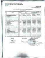 Báo cáo KQKD công ty mẹ quý 1 năm 2011 - Công ty Cổ phần Đầu tư Xây dựng Bình Chánh