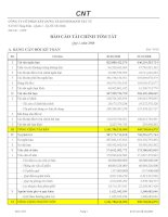 Báo cáo tài chính quý 2 năm 2008 - Công ty Cổ phần Xây dựng và Kinh doanh Vật tư