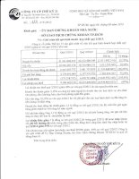 Báo cáo tài chính hợp nhất quý 2 năm 2013 - Công ty cổ phần Thế kỷ 21