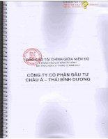 Báo cáo tài chính công ty mẹ quý 2 năm 2014 (đã soát xét) - Công ty Cổ phần Đầu tư Châu Á - Thái Bình Dương
