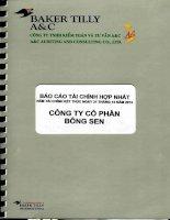 Báo cáo tài chính hợp nhất năm 2013 (đã kiểm toán) - CTCP Bông Sen