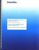 Báo cáo tài chính hợp nhất năm 2012 (đã kiểm toán) - Công ty Cổ phần Xây dựng và Kinh doanh Vật tư