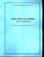Báo cáo tài chính quý 1 năm 2012 - Công ty cổ phần Xuất nhập khẩu An Giang