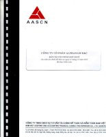 Báo cáo tài chính hợp nhất năm 2013 (đã kiểm toán) - Công ty Cổ phần Alphanam E&C