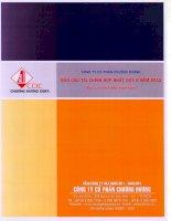 Báo cáo tài chính hợp nhất quý 2 năm 2012 - Công ty Cổ phần Chương Dương