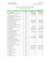 Báo cáo tài chính quý 3 năm 2010 - Công ty cổ phần Vicem Bao bì Bỉm Sơn