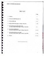 Báo cáo tài chính năm 2012 (đã kiểm toán) - Công ty cổ phần Dược Becamex