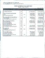 Báo cáo tài chính hợp nhất quý 4 năm 2012 - Công ty Cổ phần Đầu tư Alphanam