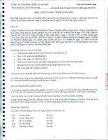 Báo cáo tài chính công ty mẹ quý 2 năm 2012 (đã soát xét) - Công ty Cổ phần Chiếu xạ An Phú