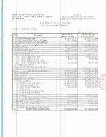 Báo cáo tài chính quý 3 năm 2009 - Công ty Cổ phần Thuốc sát trùng Cần Thơ