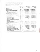 Báo cáo tài chính hợp nhất quý 1 năm 2013 - Công ty cổ phần Thế kỷ 21