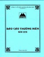 Báo cáo thường niên năm 2015 - Công ty cổ phần Khoáng sản Bình Định