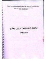 Báo cáo thường niên năm 2012 - Công ty cổ phần Thực phẩm Nông sản Xuất khẩu Sài Gòn