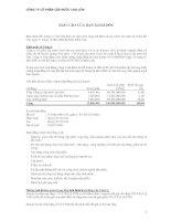 Báo cáo tài chính năm 2008 (đã kiểm toán) - Công ty Cổ phần Cấp nước Chợ Lớn