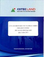 Báo cáo tài chính hợp nhất quý 3 năm 2015 - Công ty Cổ phần Đầu tư và Phát triển Nhà đất COTEC