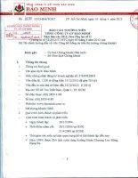 Báo cáo thường niên năm 2012 - Tổng Công ty Cổ phần Bảo Minh