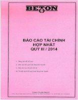 Báo cáo tài chính hợp nhất quý 3 năm 2014 - Công ty Cổ phần Beton 6