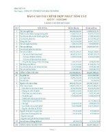 Báo cáo tài chính quý 4 năm 2009 - Công ty Cổ phần Văn hóa Tân Bình