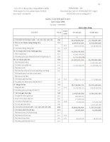 Báo cáo tài chính quý 3 năm 2008 - Công ty Cổ phần Cơ khí và Xây dựng Bình Triệu