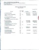 Báo cáo tài chính quý 4 năm 2010 - Công ty Cổ phần Tấm lợp Vật liệu xây dựng Đồng Nai