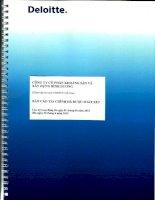 Báo cáo tài chính quý 2 năm 2013 (đã soát xét) - Công ty Cổ phần Khoáng sản và Xây dựng Bình Dương