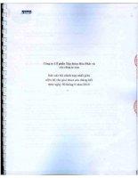 Báo cáo tài chính quý 2 năm 2010 (đã kiểm toán) - Công ty cổ phần Tập đoàn Hòa Phát
