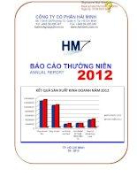 Báo cáo thường niên năm 2012 - Công ty Cổ phần Hải Minh